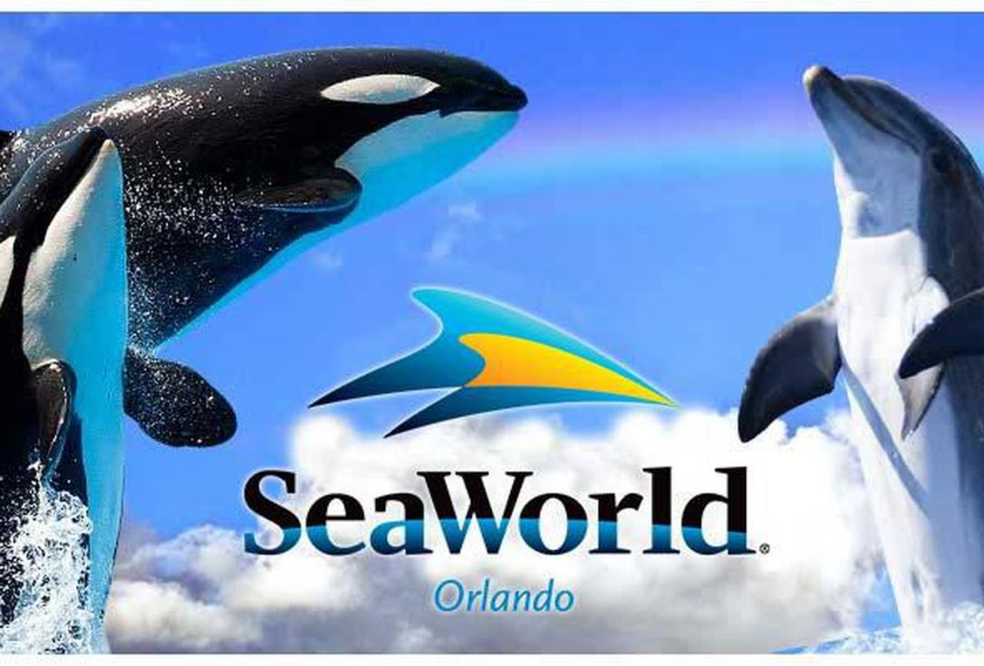 https---blogs-images.forbes.com-dalebuss-files-2016-03-seaworld-main-image